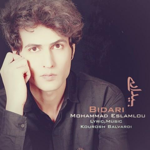 موزیک جدید محمد اسلاملو بیداری