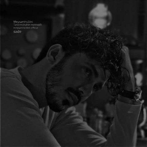 موزیک جدید میثم حسینی ساده