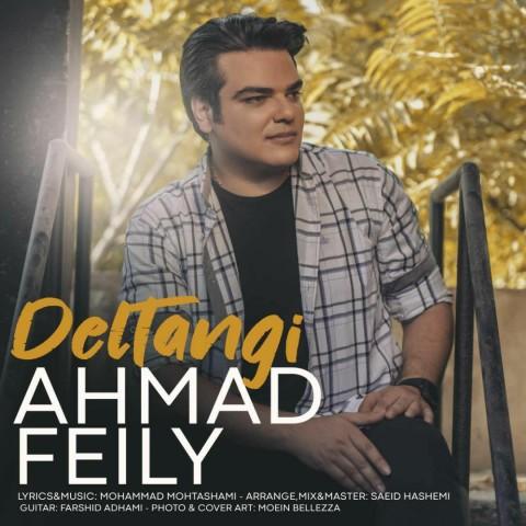 موزیک جدید احمد فیلی دلتنگی