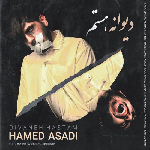 موزیک جدید حامد اسدی دیوانه هستم